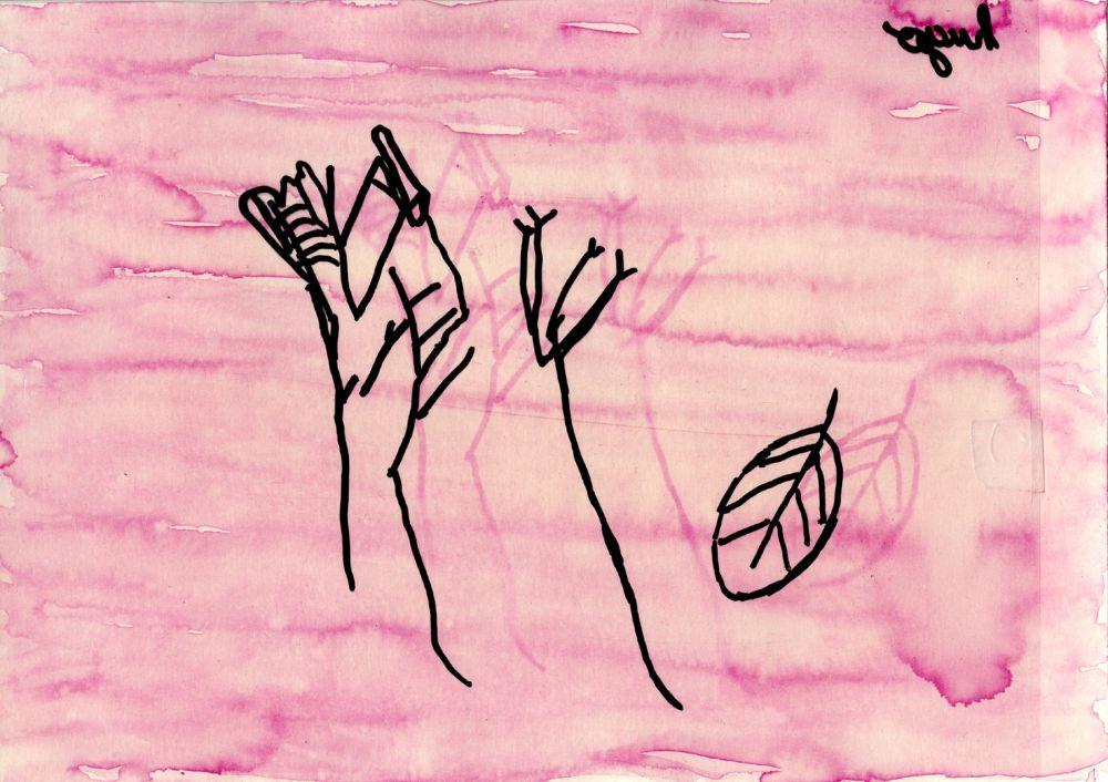 Anthotype de l'exposition Cueillette, Elisabeth Delétang